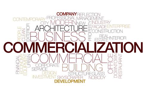 ادبیات نظری تجاری سازی محصولات